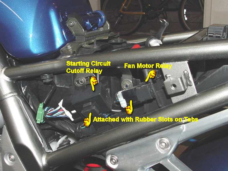 urgent help needed now sorted ls1 fan relay wiring diagram what gauges to use? fz1oa message board
